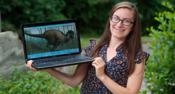 UCC researcher and team make landmark dinosaur discovery