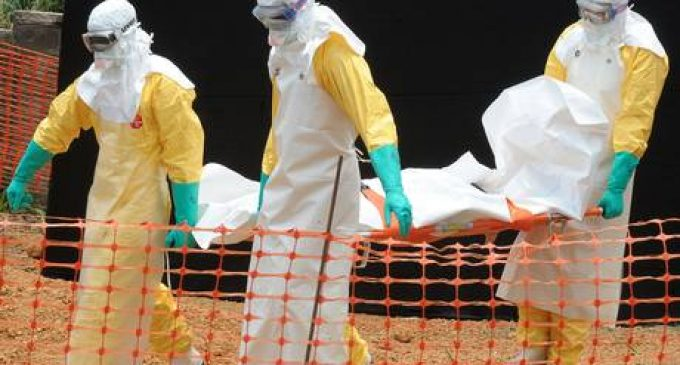 Rapid and durable protection against Ebola virus with new vaccine regimens