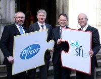 SFI-Pfizer Biotherapeutics Innovation Award Programme 2015