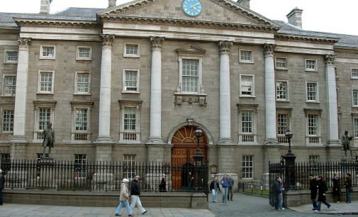 Trinity's pilot programme to support freshers throughout first term