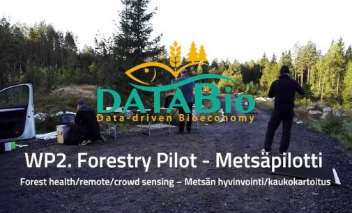 Finnish Pilot Develops a New Solution For Sustainable Forestry