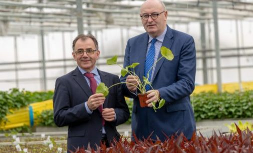 Beotanics Builds New R&D Centre