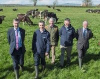 Kerry Agribusiness & Teagasc Celebrate 25 Years of Joint Programme Success