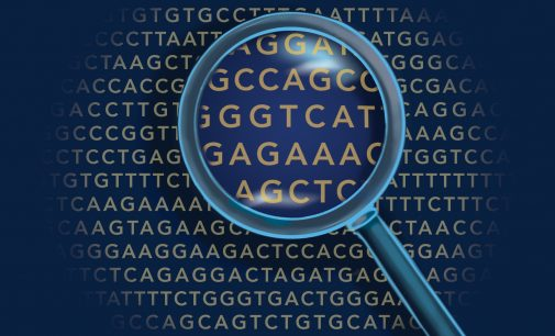 All change as researchers find new meanings in our genetic code